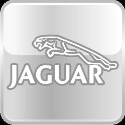 Уретановые подушки Jaguar
