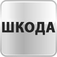 Дверные чаши Skoda