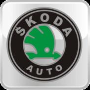 Спойлеры на Skoda