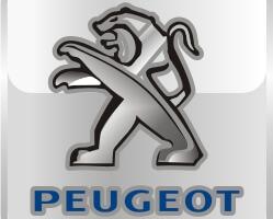 Брызговики для Peugeot