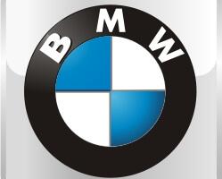 Коврики в салон BMW