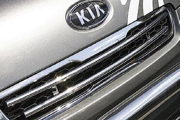 Декоративные элементы решётки радиатора Kia Soul