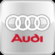 Пороги-подножки Audi